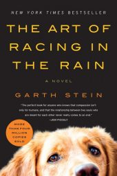 One of our recommended books is The Art of Racing in the Rain by Garth Stein