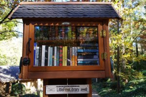 Little Free Library in Sandy Spring Georgia