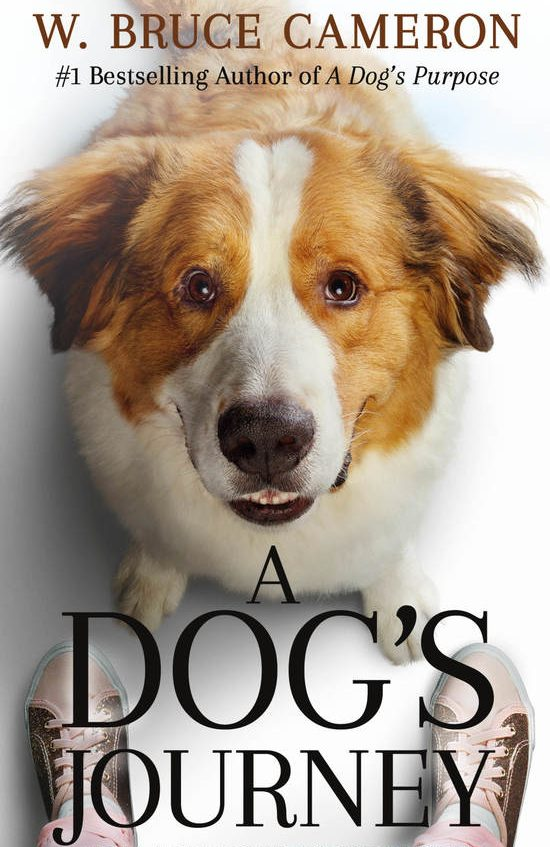One of our recommended books is A Dog's Journey by W. Bruce Cameron