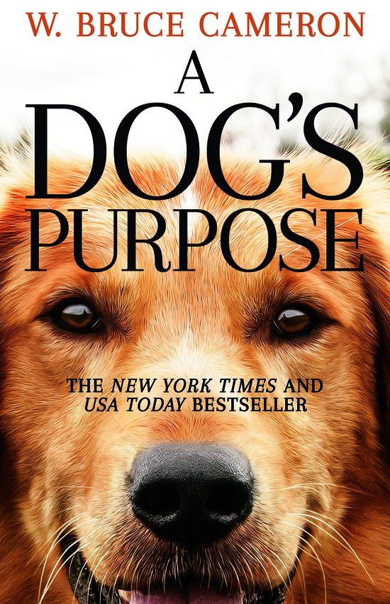 One of our recommended books is A Dog's Purpose by W. Bruce Cameron