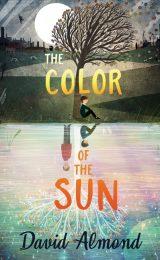 One of our recommended books is The Color of the Sun by David Almond