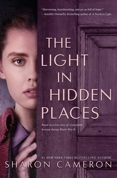 One of our recommended books for 2020 is The Light in Hidden Places by Sharon Cameron