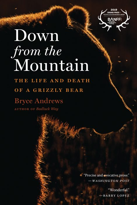 One of our recommended books is Down from the Mountain by Bryce Andrews