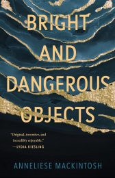One of our recommended books is Bright and Dangerous Objects by Anneliese Mackintosh