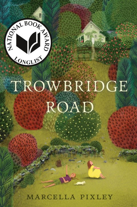 One of our recommended books is Trowbridge Road by Marcella Pixley