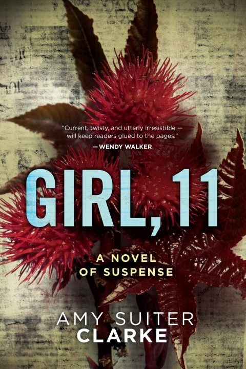 One of our recommended books is Girl, 11 by Amy Suiter Clarke