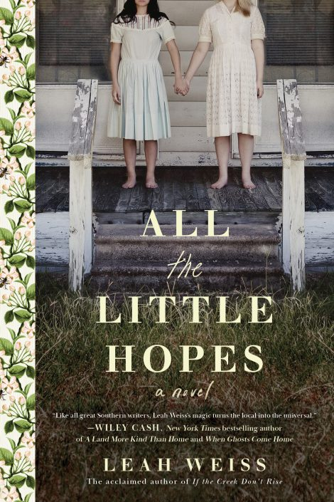 One of our recommended books is All the Little Hopes by Leah Weiss