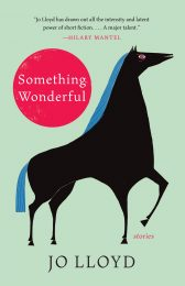 One of our recommended books is SOMETHING WONDERFUL by JO LLOYD